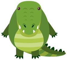 Crocodile mignon avec visage heureux vecteur