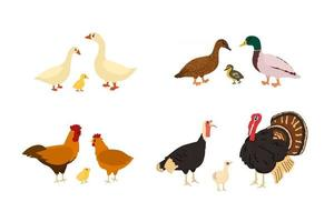 canard de dessin animé mignon, oie, poulet, coq, dinde, poulet, oison vecteur