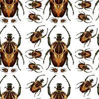 Seamless pattern de scarabée vecteur