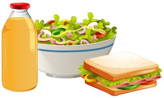 Un sandwich et une salade santé vecteur