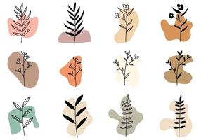 art végétal boho et forme abstraite vecteur