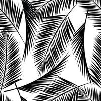 Modèle exotique sans couture avec des feuilles de palmier. vecteur