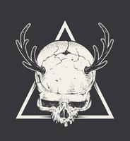 Crâne avec des cornes