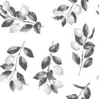 citron et branches éclosion modèle sans couture de vecteur