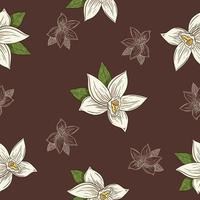 fleurs de vanille dessinées à la main dans un modèle sans couture de style vintage vecteur
