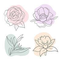 graphiques fleurs pivoine, rose, strelitzia, jonquille vecteur
