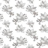fleurs de vanille et gousses modèle sans couture dessin au trait de style vintage vecteur
