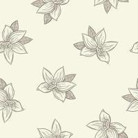 fleurs de vanille gravées dans un modèle sans couture de style vintage vecteur