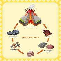 diagramme montrant le cycle de la roche vecteur