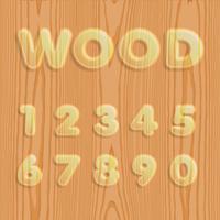 Jeu de polices de bois texturé, illustration vectorielle