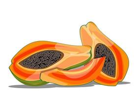 dessin vectoriel d'illustration de fruit de papaye fraîche