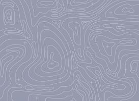 fond de carte topographique de contour vectoriel abstrait