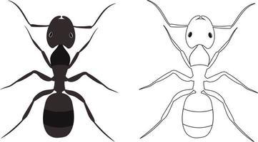 illustration vectorielle de fourmi ou formicidae vecteur