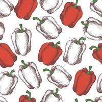 poivrons rouges sur fond blanc. modèle de style vintage sans couture vecteur