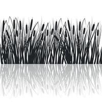 silhouette de roseaux et de joncs dans l'herbe verte. marais et rivière vecteur