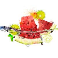 Vector fruits juteux dans l'eau, melon d'eau, citron vert, éclaboussures d'eau avec des bulles, riches couleurs vives, aquarelle