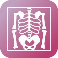Squelette plat multi couleur