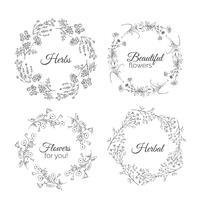 Illustration d'herbes. Cadres floraux. vecteur