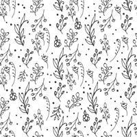 Floral pattern sans soudure. Imprimé d'herbes et de fleurs sauvages. vecteur