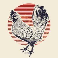 Illustration de coq de vecteur