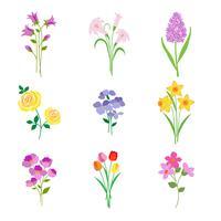 Fleurs botaniques printanières dessinées à la main vecteur