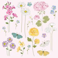 clipart fleurs et papillons dessinés à la main vecteur