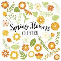 Fleurs de printemps oranges et jaunes vecteur