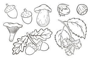 ensemble d'éléments de récolte dessinés à la main vecteur