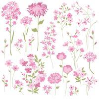 Fleurs dessinées à la main rose vecteur
