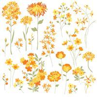 Fleurs jaunes dessinées à la main vecteur