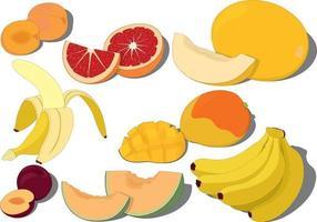 illustration vectorielle de fruits mûrs sucrés collection vecteur