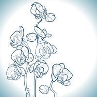 orchidée isolée sur blanc vecteur
