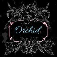 fond noir avec des orchidées blanches vecteur
