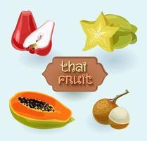 fruits thaïlandais. fruits de Thaïlande. pomme rose, carambole, papaye vecteur