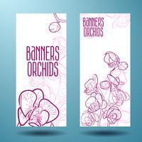 Orchidées sur la bannière pour le design vecteur