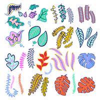 Ensemble de couleurs à la mode de feuilles tropicales. vecteur