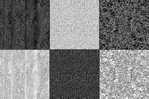 textures naturelles noir et blanc vecteur