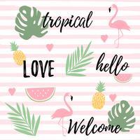 Fond tropical avec ananas et melon d'eau de flamants roses