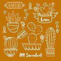 Cactus et plantes succulentes en pots. vecteur