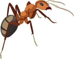 illustration vectorielle d'insectes fourmis rouges vecteur