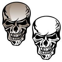 Illustration vectorielle de crâne humain isolé vecteur