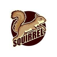 logo d'écureuil vecteur