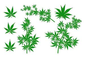 ensemble de vecteurs de feuilles de cannabis en pot de chanvre de marijuana. vert médical vecteur