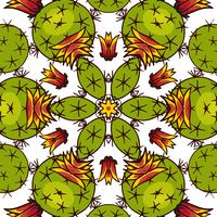 Kaléidoscope de plantes succulentes. vecteur