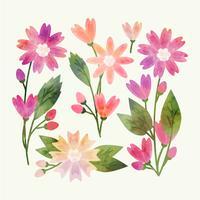 Fleurs peintes de vecteur