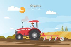 Travaux agricoles sur un champ avec tracteur. vecteur