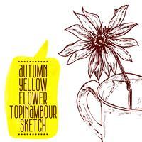 croquis de topinambour fleur jaune dessiné à la main vecteur