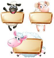 Trois signes vierges avec des moutons mignons vecteur