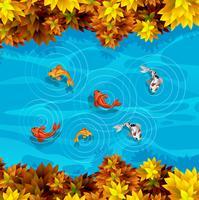 Une vue aérienne de l'étang à poissons vecteur