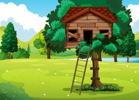 Vieille cabane dans le parc